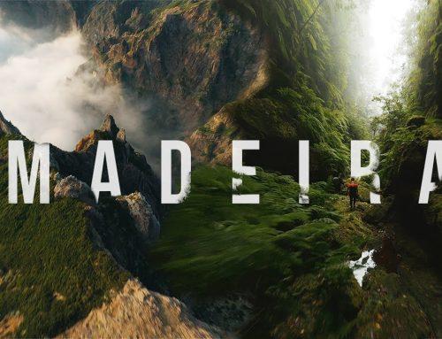 Explorar a ilha da Madeira